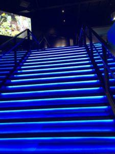 VRゾーン新宿階段